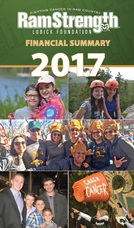 RamStrength Annual Report 2017